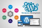 WordPress Design & Development Service Company in Dubai