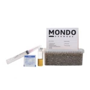 Buy Mondo Grow Box